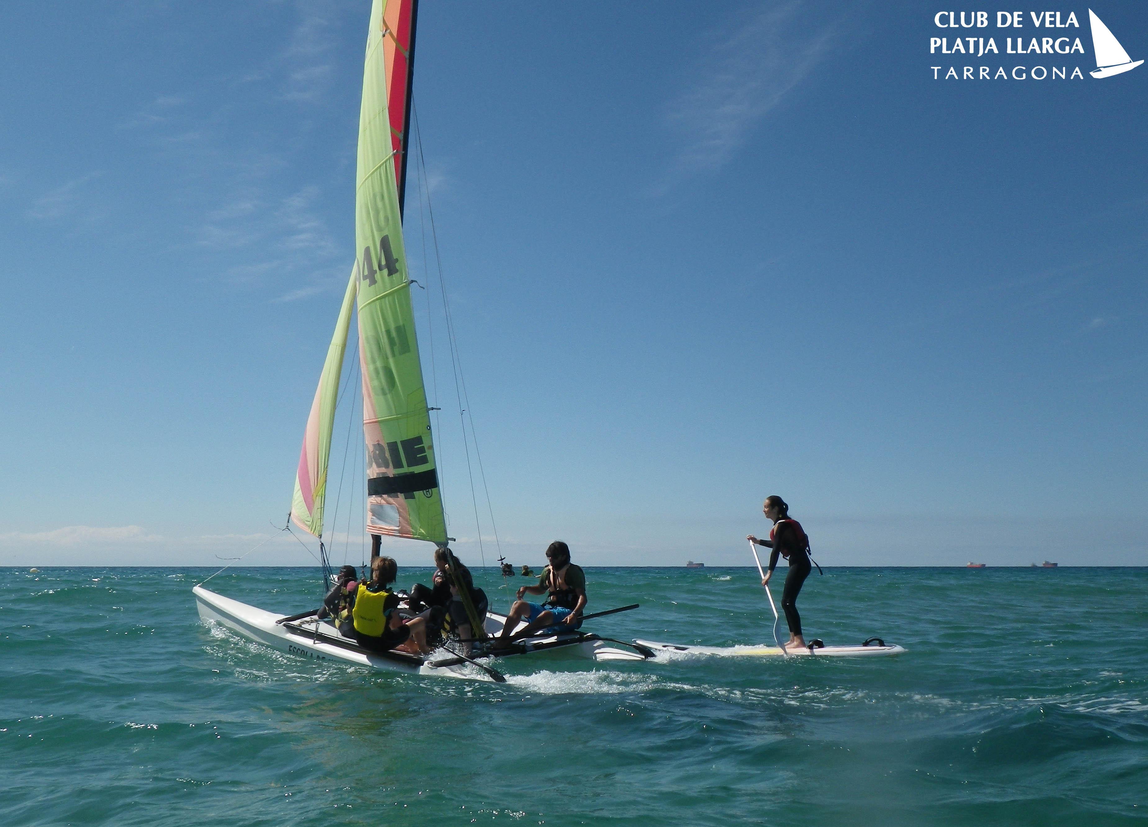 catamaran i paddel surf